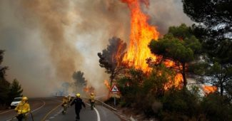 Firefighters work to control a raging forest fire as trees are engulfed in flames next to a road in Ojen, southern Spain, Friday, Aug. 31, 2012. Spanish officials say some 4,000 people have been evacuated from their houses as a wildfire abetted by strong winds spread rapidly through hills around the popular southern tourist city of Marbella. (AP Photo/Sergio Torres)
